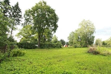 Bieriņi ir Rīgas privātmāju rajons, kas robežojas ar Mārupi, Torņakalnu un Āgneskalnu.